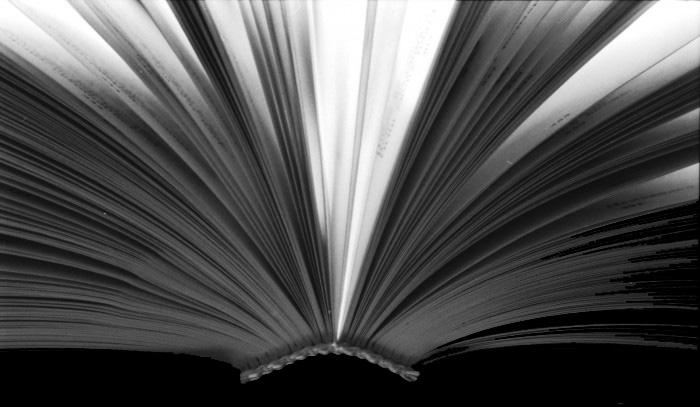 pubblicazione-libro-700x447
